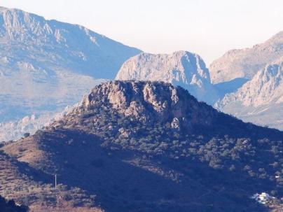 Cutar Malaga23