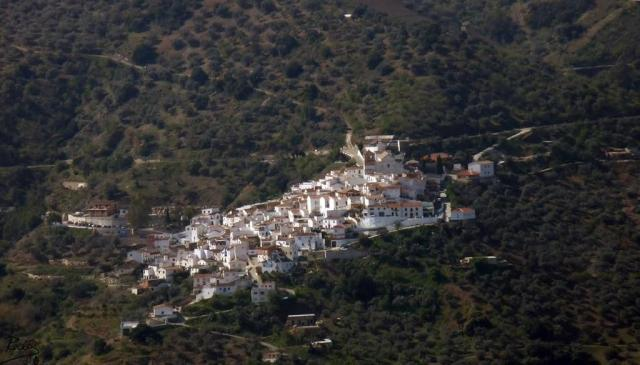Cutar Malaga8
