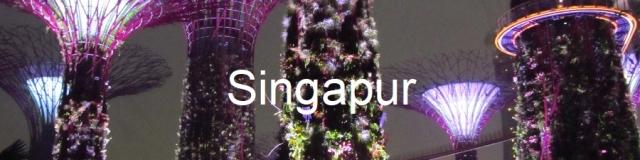 Singapur Alwashere.jpg