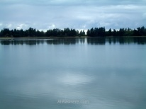 Preciosas vistas de la costa desde el water taxi