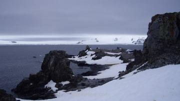 Un saliente de tierra desgajado en el que hay otro grupo de nidos de pingüino