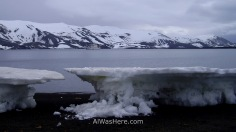 Icebergs encallados en la orilla en la Bahía de los Balleneros, con el barco al fondo