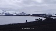Una lancha zodiac desembarcando junto a un grupo de pingüinos barbijos en Bahía de los Balleneros
