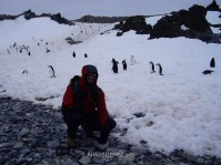 Una de las normas en la Antártida es no molestar a los animales, pero los pingüinos son muy inocentes, y pasarán junto a nosotros con total confianza