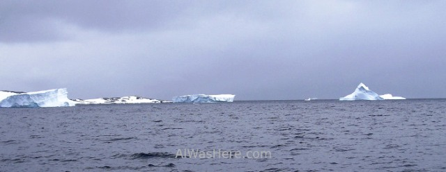 Antártida Cuverville Island Antarctica (1)