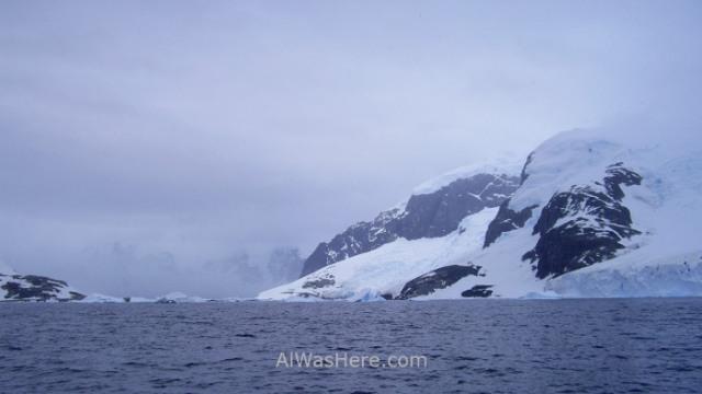 Antártida Cuverville Island Antarctica