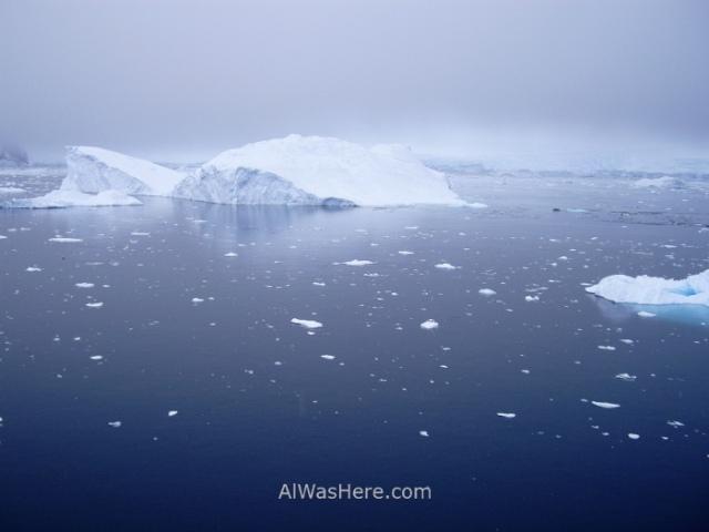 Icebergs Antartida Puerto Neko, Antarctica Neko Harbour