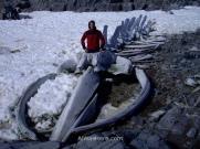 Con un esqueleto de ballena en Port Lockroy, Antártida